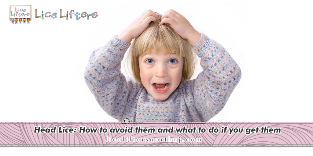 Head Lice How to avoid them and what to do if you get them